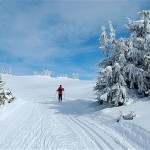 Discover The Delights of Skiing In Norway