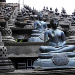Places to See and Things to Do in Colombo